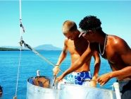 Book your Sosua Freestyle Catamaran and Snorkelling cruise today | Sosua Discounted Freestyle Catamaran and Snorkelling cruise http://www.therealdominicanrepublic.com