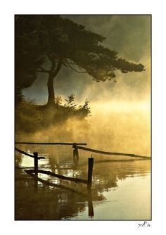 A misty morning in Limousin, Central France