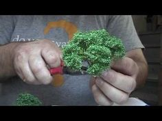 How to make model trees for model railroads
