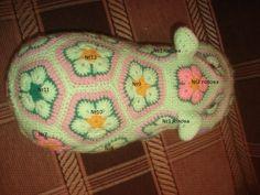 Hippo-felülnézet