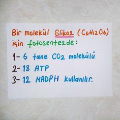 *Önemli ayrıntı #bilgi #bilim #teknoloji #biyoloji #kimya #fizik #eğitim #biology #öabt #biyolojiöabt #ygslys #matematik #ygs #lys #2017tayfa #2018tayfa http://turkrazzi.com/ipost/1524937110757549659/?code=BUpqjkHg6Zb