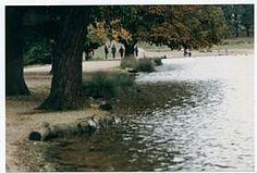 Pen Ponds, Richmond upon Thames