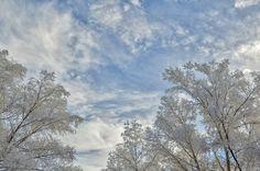 Эти потрясающей красоты уникальные фотоснимки белоснежных пейзажей сделаны в окрестностях города Кувандык Оренбургской области в России, и публикуются с любезного разрешения их автора – фотографа-любителя Александра Кислицына