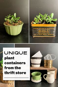 Pinterest Pin - Unique Plant Containers Purchased from Thrift Store. Painted Baskets, Metal Baskets, Plant Containers, Container Plants, Metal Planters, Planter Pots, Pothos Plant, Unique Plants, Diy Home Decor On A Budget