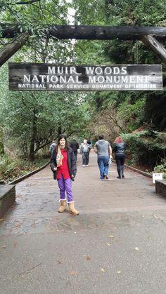 Muir Woods Califórnia 2016