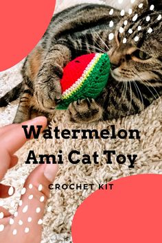 Darn Good Yarn sent me this adorable crochet kit to try out and I decided to make some kitty toys with it! Hint: I stuffed a little catnip in with the stuffing :) Find my review and a link to the kit at hookyarncarabiner.com #crochet #cattoy #watermelon #catnip #crochetkit #yarn #crochethook Crochet Cat Toys, Funny Crochet, Crochet Humor, Crochet Food, Free Crochet, Crochet Designs, Crochet Ideas, Crochet Patterns For Beginners, Darning