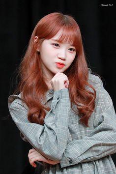 181118 Busan(부산) 7th fan sign event #izone #chaewon Kpop Girl Groups, Kpop Girls, Kang Sora, Yuri, Secret Song, Honda, Uzzlang Girl, Japanese Girl Group, One Hair
