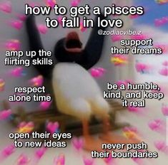 Pisces Lover, Pisces And Capricorn, Zodiac Signs Pisces, Zodiac Sign Traits, Zodiac Signs Astrology, Pisces Facts, Zodiac Star Signs, Zodiac Horoscope, My Zodiac Sign
