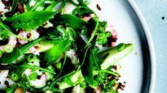 Salat med avocado og rejer