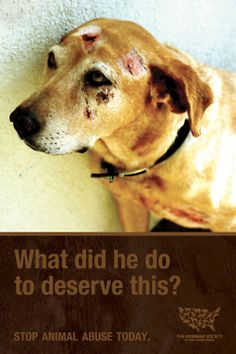 """breaks my heart, my only problem is what the national company behind this ad actually do and who they """"support"""""""