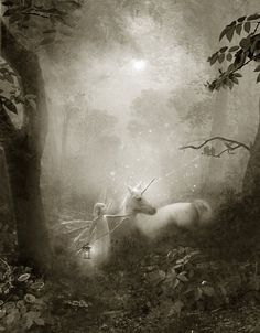 Fairy gift   'The Journey Home'  cropped sepia version Hand signed print By Charlotte Bird