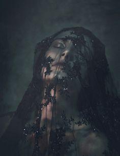 Alex London beaded veil                                                                                                                                                                                 Plus