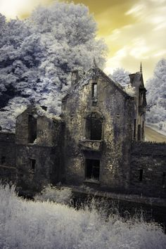 The ruins of Crookstown Mill, Co. Cork, Ireland.