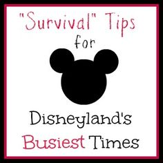 Occasionally Crafty: How to Survive Disneyland During the Busiest Times