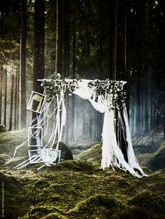 Skogen bjuder på finaste bakgrunden, här med LILL spetsgardiner som inramande photo op, MOSSEBO ram.