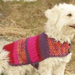 Pet clothes patterns galore