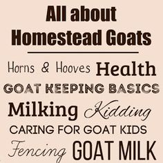 All about homestead goats: goat keeping basics and so much more - over 25 articles to help you become a better goat keeper. Make Mozzarella Cheese, Chevre Cheese, Lemon Cheese, Diy Shampoo, Shampoo Bar, Home Canning Recipes, Emergency Binder, Goat Care, Raising Goats