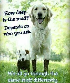 So cute, and so true!