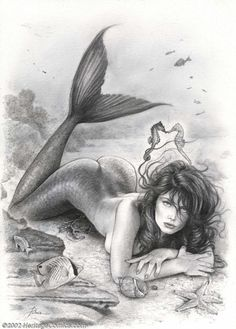 Is this position better? IT ALREADY HAS SEAHORSES!!