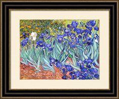 Vincent Van Gogh Irises Print