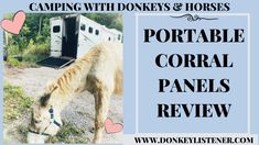 Portable corral panel review... can they work out for you? #horsecamping #donkey Horseback Riding Trails, Horse Camp, Donkey, Camping, Horses, Campsite, Donkeys, Horse, Campers