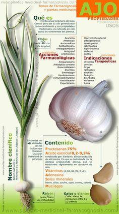 El ajo y sus propiedades - Infografías y Remedios. #infografia #ajo