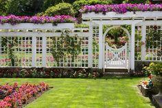 Unique Fences and Fence Plans