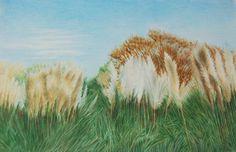 授業風景の画像 | 色鉛筆アートの世界