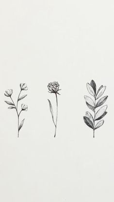Daily Drawing — Mali Fischer Illustration in aesthetic flower drawing floral sketch design minimal flower drawing Flower Tattoo Designs, Flower Tattoos, Small Tattoos, Rosa Tattoos, Pink Tattoos, Watercolor Flowers, Watercolor Tattoo, Drawing Flowers, Tattoos Motive