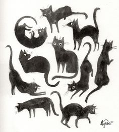 kitty funny cute Black and White Halloween draw watercolor ink gato goth luck acuarela blanco y negro black cats dibujo tinta suerte gatos negros Art And Illustration, Cat Illustrations, Animal Design, Cat Design, Graphic Design, Crazy Cats, Animal Drawings, Art Reference, Character Design