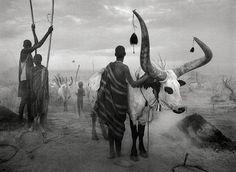 Salgado - Dinka du Soudan