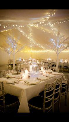 http://www.leddancefloorhire.co.za Garden Hedges, Led Dance, White Led Lights, Artificial Tree, Winter Garden, Christmas 2016, Birthday Party Themes, Winter Wonderland, Stream Bed