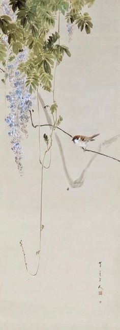 """""""Wisteria and Sparrow"""", Watanabe Shotei (1851–1918) - full scroll. - Sumi (Ink) and watercolor on paper."""