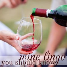 What's a Tannin? (And Other Wine Words You Should Know