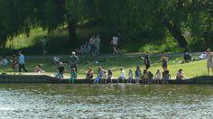 paddling Hampstead Heath, Dog Walking, Best Part Of Me, Dolores Park, Parties, Seasons, Fun, Travel, Fiestas
