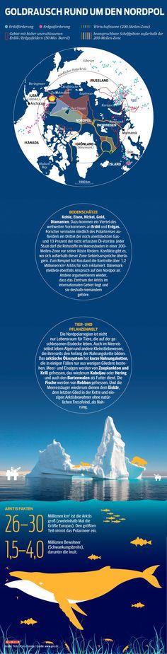 Warum Ölbohrungen das Ökosystem Norpol zum Kippen bringen können. http://kurier.at/lebensart/leben/oel-goldrausch-rund-um-den-nordpol/132.407.847