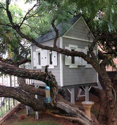 Unique tree house designs to suit your budget built from high grade pine wood. Tree Houses, Play Houses, Tree House Designs, Unique Trees, Pergola, Outdoor Structures, Building, Plants, Kids