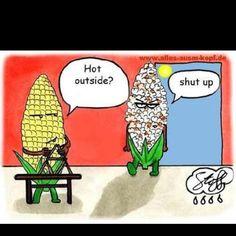 Arizona summer humor!