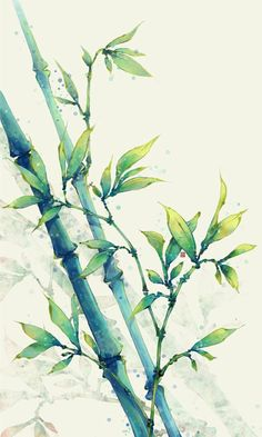 Chinese Painting Of Bamboo Stock Illustration . Finding Best Ideas for your Building Anything Watercolor Flowers, Watercolor Paintings, Watercolor Japan, Illustration Blume, Nature Illustration, Watercolour Illustration, Botanical Illustration, Bamboo Art, Bamboo Drawing