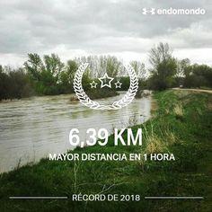Paseo de 6.52 km para el @clubdelpaseo... Y de paso vigilando la crecida del río Ega a su paso por #Andosilla #Navarra