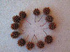 Lot of 12 Sweet Gum Tree Seed Pods Natural Art Craft Mixed Media Supplies ($3 plus $3.95 ship)