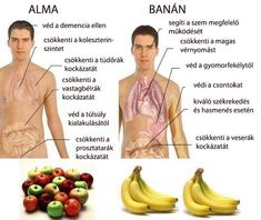 Banana contains three natural sugars such as sucrose, fructose and glucose combined with fiber. Banana is considered to be the substantial boost of energy. A banana is equal to strenuous 90 minutes… Health And Nutrition, Health And Wellness, Health Care, Health Foods, Vegetable Nutrition, Health Recipes, Sports Nutrition, Nutrition Tips, Health Fitness