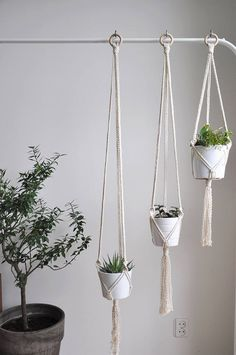 Set of 3 minimal modern macrame plant hangers. They are perfect for smaller pots and together create nice boho decor. Yanyula offers a width range of macrame hanging planters in modern, minimalistic style with a dash of boho dream. MADE TO ORDER in 1-3 business days  >> color: natural cotton/ecru/beige/linen  >> measurements: (this listing is for the macrame plant hanger only, does not include plant or pot)  pot diameter 11cm (4,3 in) height 10 cm (4 in)  +/- c...