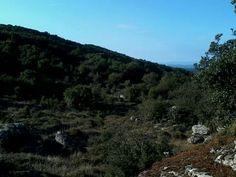 Località Bolotana