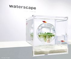 Waterscapes aquarium exhibit. See more at if it's hip, it's here.