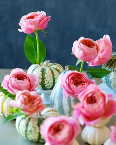A surprising (and lovely) color palette for a pumpkin centerpiece.