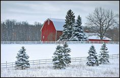 Red barns in winter ~ photo via Holly Ehlenfeldt Stockman Beautiful! Country Barns, Country Living, Country Roads, Beautiful Places, Beautiful Pictures, Winter Magic, Winter Snow, Winter White, Country Scenes