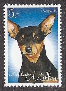 Dog Art Head Portrait Postage Stamp Miniature Pinscher Netherlands Antilles MNH | eBay