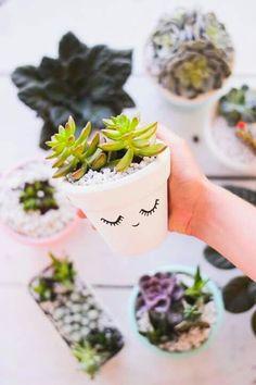 Imagen de plants, cactus, and diy