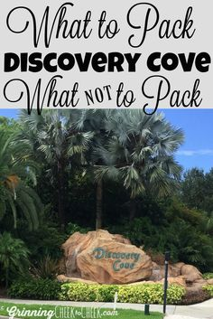What to pack for Discovery Cove
